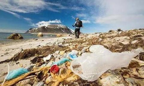 美国废塑料出口创2019年以来月度额最高纪录